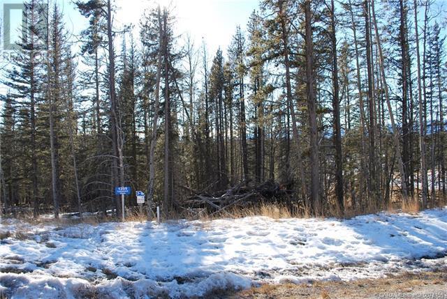 1205 Tamarack Trail