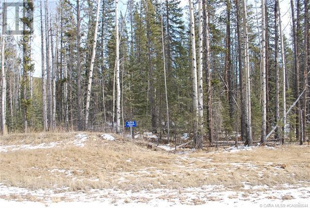 1273 Tamarack Trail