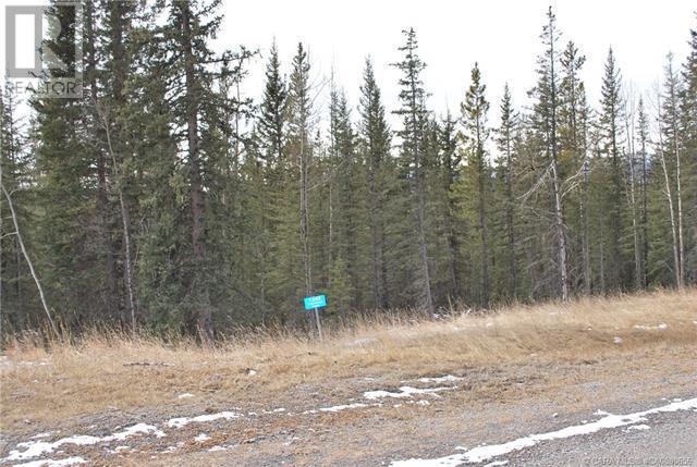 1245 Tamarack Trail