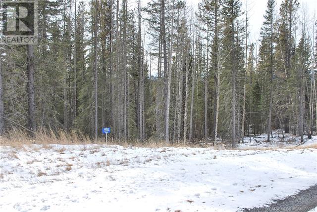 1253 Tamarack Trail